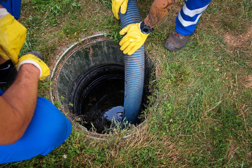 septic service branchville nj